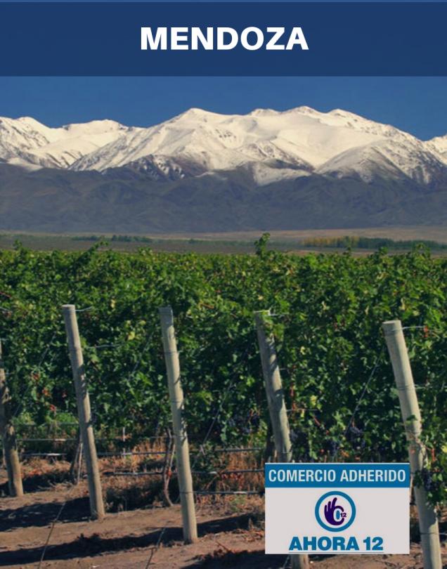 Mendoza 2020